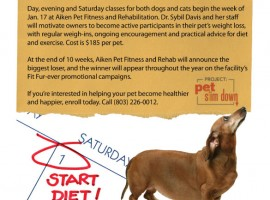Flyer: Aiken Pet Fitness & Rehab
