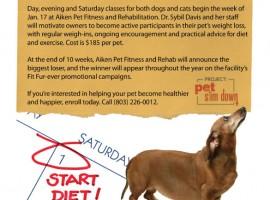 Flyer: Aiken Pet Fitness & Rehab